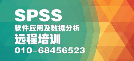 spss-550.jpg